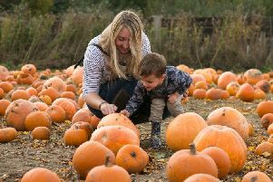 Pumpkin picking at Doddington Hall EMN-191015-101317001