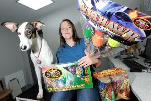 Eastfield Vets veterinary nurse Julie Brewer and Twiggy with fireworks, pictured last year.