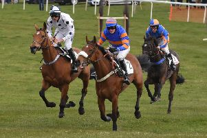Some of the action from last year's Point to Point races.