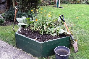 The charity is looking for volunteers to help with the garden