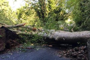 The road has been blocked in both directions.
