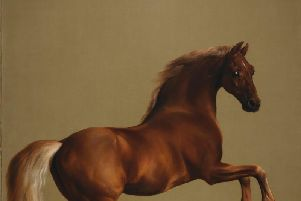 The famous Whistlejacket by George Stubbs