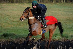 Indefatigable and her work rider Jack Cater come up the all-weather gallop at Cropredy Lawn. Photo: Jake McNulty