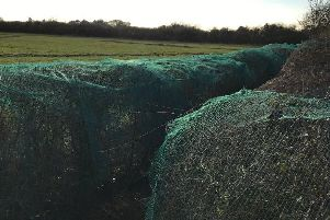A netted hedgerow in the Vale of Belvoir EMN-190415-152323001