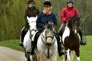 Enjoying a ride through the Belvoir Estate grounds PHOTO: Tim Williams