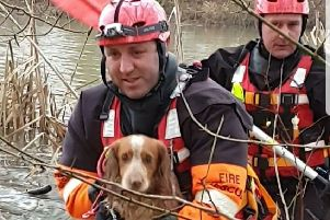 Firefighters bring cocker spaniel Artie back to his owners in a dinghy in a lake at Melton Country Park'PHOTO WENDY GRAY EMN-191230-135609001