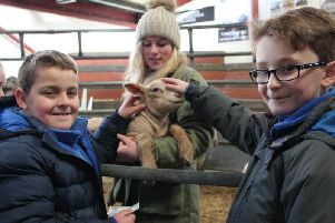 Rosie Cosgrove, from Louth Young Farmers, introduces North Thoresby Primary Academy pupils to a little lamb!