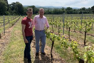 Nick Herbert with Simon Woodhead at Stopham Estate Vineyard