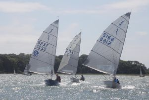 Solo open action at Dell Quay / Picture by Becki Dicker