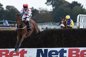 Mellow Ben wins at Fontwell / Picture: Fontwell Park