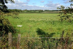 Land at Ockley Lane north of Clayton Mills where 500 homes are planned. Pic Steve Robards SR1723505 SUS-170920-085647001