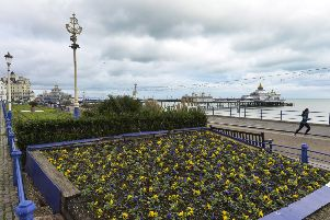 Carpet gardens on Eastbourne seafront (Photo by Jon Rigby)