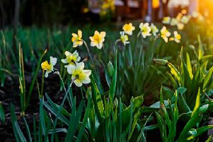 Easter will be shortly upon us, but with the bank holiday weekend just around the corner what is the weather set to be like in the South?