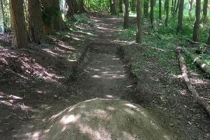 Bike ramps in Ashenground Woods, Haywards Heath. Picture: Mid Sussex District Council