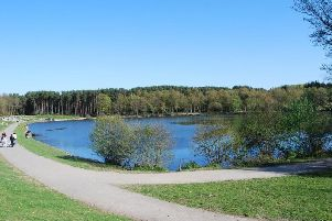 Tilgate Park - picture by Barry Shimmon