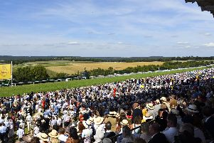 They are hoping for bumper numbers at Goodwood next week / Picture by Malcolm Wells