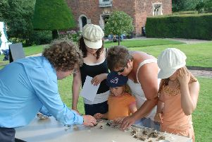 Tattershall Castle Archaeology Day EMN-190723-171132001