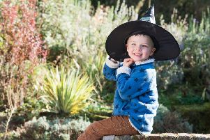 Borde Hill is holding a series of Halloween events. Picture by Alex Rickard Photography