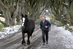 "Danny McKinley from Sheans Horse Farm exercises his horse on the ""Dark Hedges"" as snow melts across Northern Ireland"
