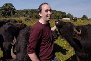 Barry O'Brien tends to his herd on Northern Ireland's only buffalo farm