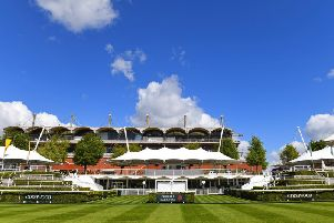 Goodwood is set to welcome some Swedish visitors / Picture by Malcolm Wells