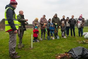 Volunteers are needed to help with a community tree-planting initiative.