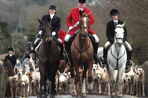 Hunting laws should be firmed up, says the charity