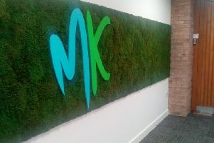 One of the panels of wall moss upstairs at the civic offices