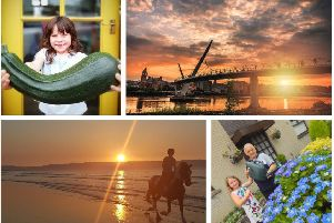 One Summer's Day: click on the images above or link below to launch our gallery of your pictures