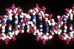 A DNA double-helix, one of the most basic building blocks of life