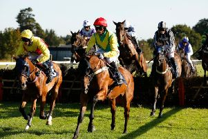 Racing under sunny skies at Ladies' Evening at Fontwell Park / Picture by Clive Bennett