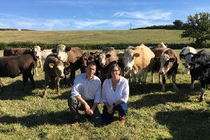 Stuart and Emma Watson with their milkbeef herd
