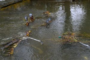 Photos taken on Saturday morning show the trolleys floating in the river