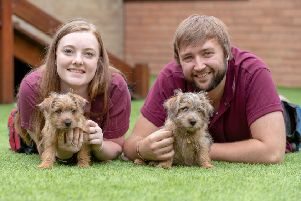 Staff at Waltham Petcare Science Institute with two of the cuddly residents EMN-191128-164827001