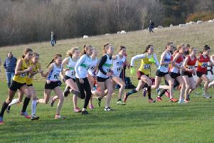 One of the girls' races at Stanmer Park / Picture: Anna Appleton