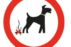Elected members discussed dog fouling at Monday's meeting.