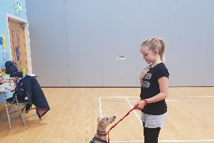 Puppy School already runs classes across Hampshire and West Sussex