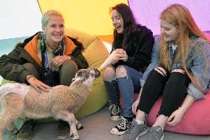 Students feeding an excitable lamb at East Sussex College's stress-busting day. Photo by Jon Rigby