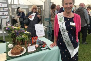 Janis Tunnerly, Lincolnshire South Federation Trustee, show secretary for the WI tent and a member of Wellingore WI praising the Down on the Farm entries.