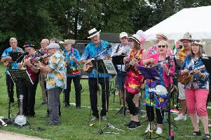 The Buckingham Ukelele Group performing as part of Winslow Concert Band's 25th anniversary party at Tomkins Park