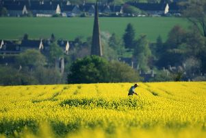 What will the beautiful Oxfordshire countryside look like in 2050?