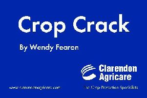Crop Crack logo