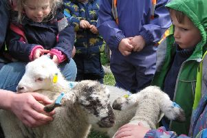 The children waited their turn for a cuddle with a lamb