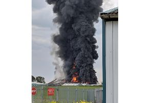 Submitted picture
