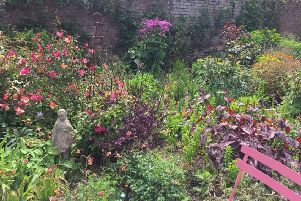 A St Michael's hospice Open Garden at Winchelsea SUS-190705-131506001
