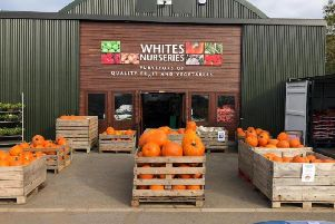Whites Nurseries Ltd is hoping to open a new cafe and butchers at its Earls Barton site.