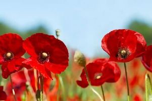 World War Two veterans will be recognised.