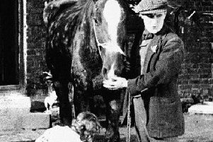 A still from the original War Horse film to be shown at the Hornton Pavilion on January 31. Picture courtesy of Hornton History Group