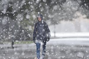 Snow falling in Peterborough's Central Park in 2018