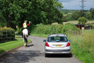 A car passing a horse safely